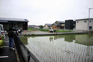 田んぼで水中の生きものについて遊びながら学ぶ風景も見られました
