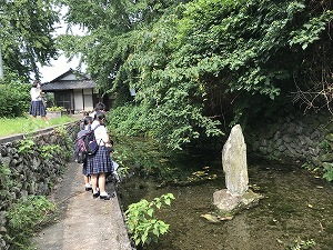 萩生寺近くの「泉大師」断層の割れ目から湧き水が出ています。縄文時代から人々に潤いを与えてくれています。